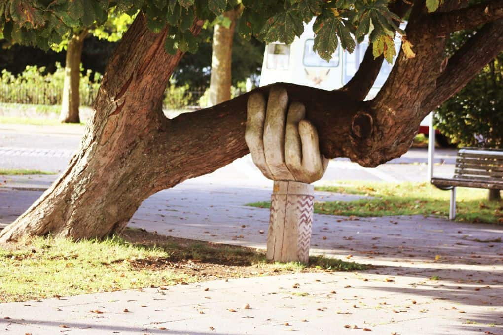 Wood carving of hand supporting tree branch
